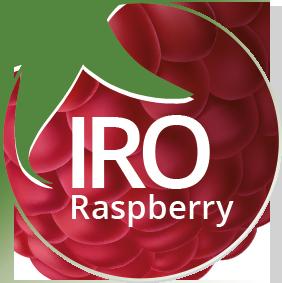 logo_web_IRO
