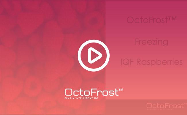 videobanner_octofrost